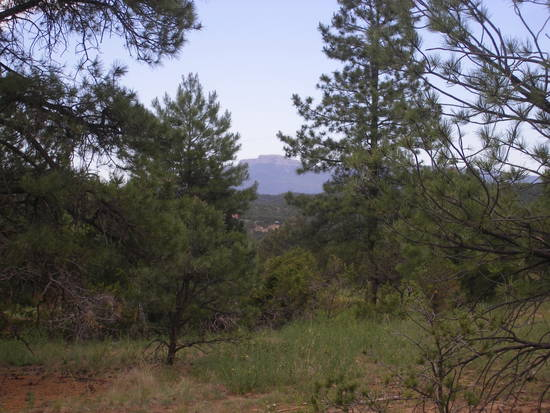 Nature's Best - Location - Location - Fun and Private Near Trinidad Lake and Wildlife Viewing!! - Longs Canyon Ranch 12 (County Road 16, Trinidad)